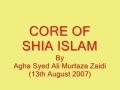 Four Perspectives On Religion - Core Of Shiat - Urdu