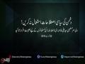 کلپ - دُشمن کی سیاسی اصطلاحات استعمال نہ کریں - Farsi Sub Urdu