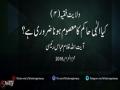 کیا الہٰی حاکم کا معصوم ہونا ضروری ہے؟ - H.I. Ghulam Abbas Raisi - Urdu