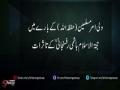 ولی امر کے بارے میں اقای رفسنجانیؒ کے تاثرات - Urdu