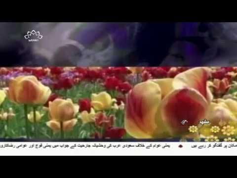 [02 May 2017] دنیا بھرمیں جشن ولادت حضرت امام زین العابدین علیہ السلام