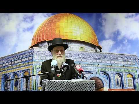 Rabbi Aron Cohen  - #FreePalestine: The Future of Jerusalem - English