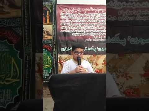 [Hussain Day 1440 Hijra ] Speech- Karballa and MuharramM.Hassan Mehdi-English