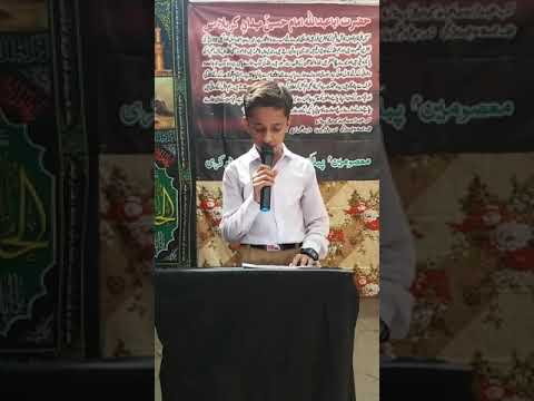 [Hussain Day 1440 Hijra ] Saying of Prophet Muhammad Talha - Sindhi