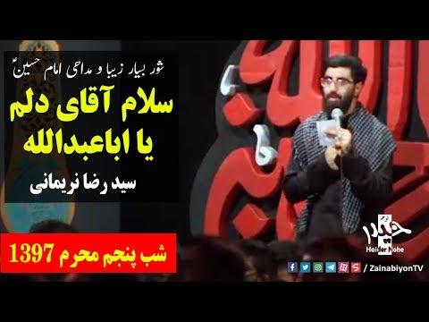 سلام آقای دلم یا اباعبدالله ( شور زیبا ) سید رضا نریمانی | Farsi