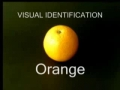 World Trade Centre 7 On 911- This is an Orange -English