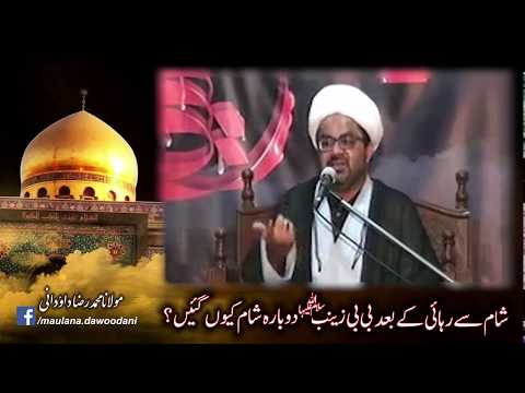 [Clip] Sham se Rihayi ke baad BiBi Zainab S.A Dubara Sham Kyun gayin? | Maulana Raza Dawoodani Urdu