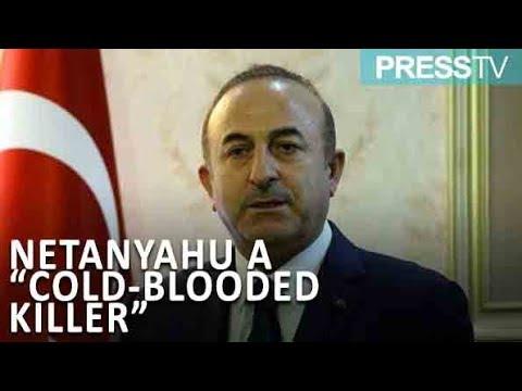 [24 December 2018] Turkish FM calls Netanyahu a \'cold-blooded killer\' - English