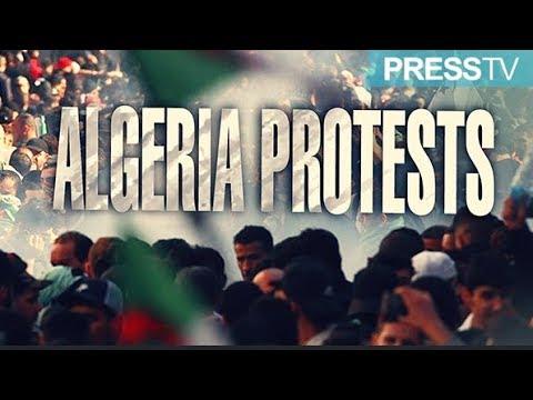 [5 March 2019] The Debate - Algeria Protests - English