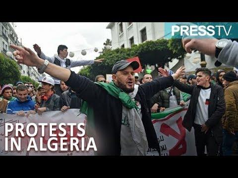 [23 March 2019] Algerians rally to demand President Bouteflika's resignation - English