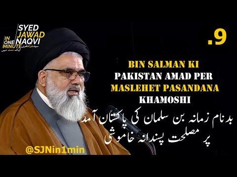 [Clip] SJNin1Min 09 -Bin Salman ki Pakistan Amad or Maslehet Pasandana Khamoshi - Urdu