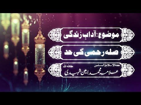 صلاحرحمی کی حد|علامہ محمد امین شہیدی حفظہ اللہ - Urdu
