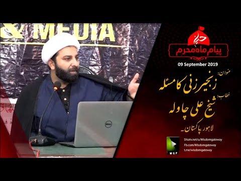 [Clip] زنجیر زنی کا مسئلہ Zanjeer Zani Ka Masla | Shaykh Ali | Urdu