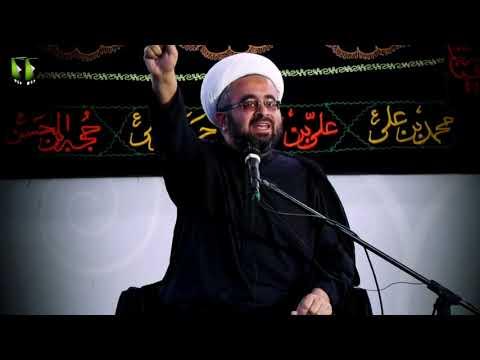 [Clip] غصبِ خلافت امیرالمومنین ؑ  کے چند عوامل | H.I Muhammad Ali Ghayyori - Urdu