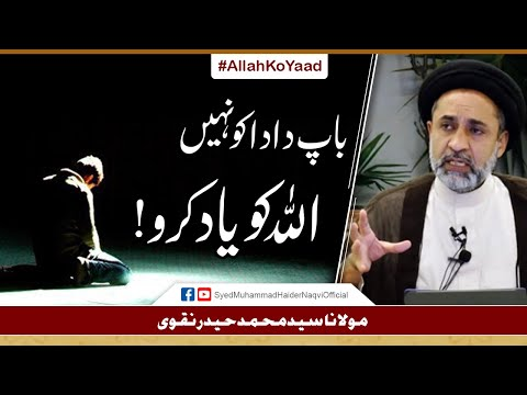 Baap Dada Ko Nahin Allah Ko Yaad Karo || Ayaat-un-Bayyinaat || Hafiz Syed Muhammad Haider Naqvi - Urdu