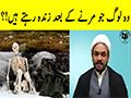 ایسے لوگ جو مرنے کے بعد زندہ رہتے ہیں || شہید کے علاوہ - Urdu