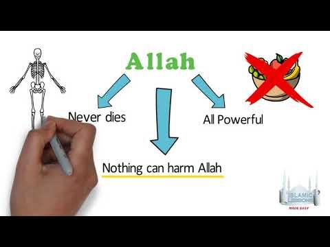 MADRASA - Allah is always Alive - B11 | English