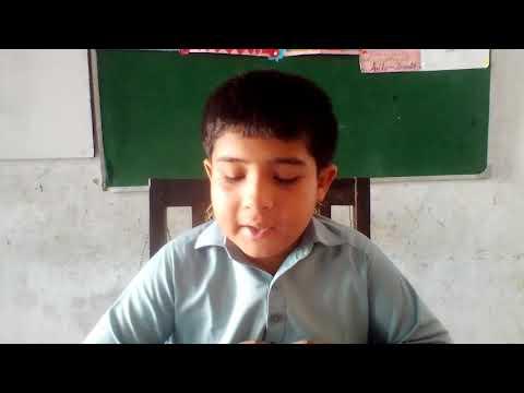 [ Introduction to Aima] Imam Ali Amir ul Momineen I Mohsin Mehdi | English/Sindhi