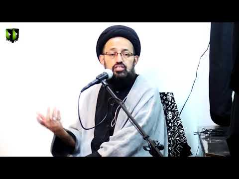 [Majlis] Mawadat-e-Qurba Kay Baray May Shia, Sunni Nazaria Or Uskay Faeday   H.I Sadiq Taqvi   Urdu