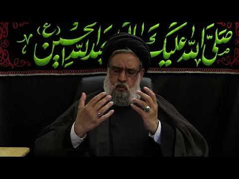 Is La\'nat in Ziyarat-e-Ashura Wrong?; Expressing Dislike in Islam - Maulana Syed Muhammad Rizvi