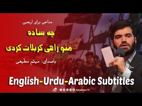 چه ساده، منو راهی کربلات کردی - میثم مطیعی | Farsi sub English Urdu Arabic