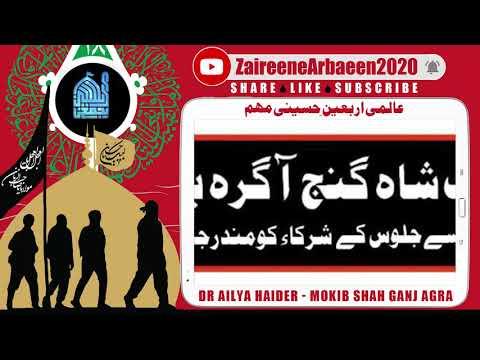 Clip | Dr Ailya Haider Jaffri | Khadime Mokib Shah Ganj Agra Khi | Aalami Zaireene Arbaeen 2020 - Urdu