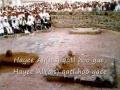 Hayee Ali A.S Qatl Hoo Gae - Nauha Imam Ali A.S. - Urdu