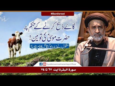 Gaye Zibah Karny Kay Hukum Par Hazrat Musa (A.S) Ki Tauheen   Ayaat-un-Bayyinaat   Hafiz Syed Haider Naqvi   Urd