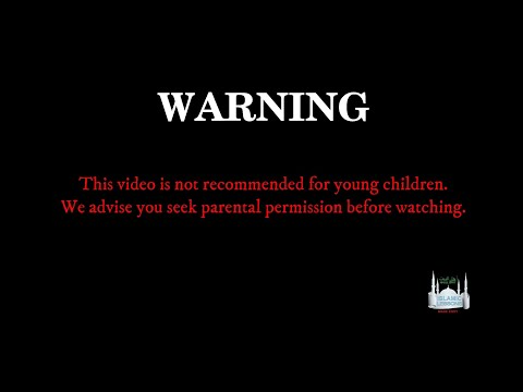 Dealing With INDECENT CONTENT In Islam | English