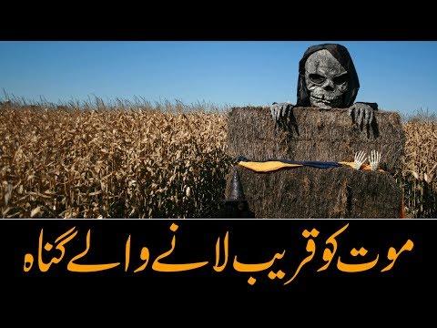 موت کو قریب لانے والے گناه - Urdu