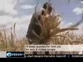 Ethiopia on the verge of Humanitarian crises - 22Oct09 - English