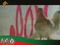 ISO 2010 Nohay - Haq Parasti Karbala Hay Karbala Bhe Deen Hay - Urdu