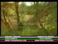 [URDU MOVIE] Carvan of Pride - Part 2 of 3 - Urdu Dub