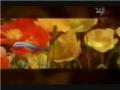 Ya Zahra (S.A.) - Nasheed - Arabic