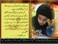 Imam Sajjad (A.S.) ke Naam Khat - Letter to Imam Sajjad (A.S.) - Urdu
