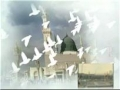 Birthday of Prophet Muhammad (s.a.w.w) - Poetry - English