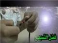 قصة تسبيح الزهراء عليها السلام Story of Tasbih Fatima (s.a.) - Arabic