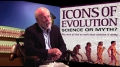 Truth has no value in science when it comes to Darwin theory of evolution-English