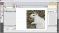 Magic Mouse Pan Image Windows Flash AS3 Tutorial CS3 CS4 - English