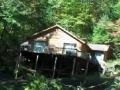Epic Tree Cutting in Lake Toxaway North Carolina - English