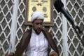 [25] H.I. Baig - Ramadan 2011 - Valayat e Faqih 4 - English