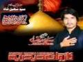 Karbala Zinda Hai - Nauha 2012 - Saleem Raza - Urdu