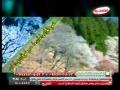حبیب ما - طبیب ما حضرت محمد ص - Nasheed for Prophet (saww) - Farsi