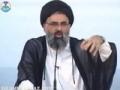 ظلم کی مزمت ظالم کی حمایت Zulm Ki Muzammat Zalim Ki Himaayat - Ustad Syed Jawad Naqavi - Urdu