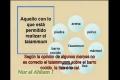 Leyes prácticas 24 Taiamum Cuestiones - Spanish