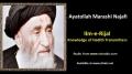 [ENGLISH] Ilm e Rijal - Excerpt from Ayatullah Marashi Najafi Speech - English