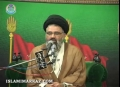 نظام ولایت قلعہ اسلام Nizam-e-Wilayat Qala-e-Islam - Ustad Syed Jawad Naqavi - Urdu
