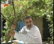 [17] Serial : Bezangah بزنگاه - Farsi