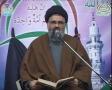 [04] اُمت کی آفات Ummat ki Aafaat (2) - 24 Safar 1434 - Ustad Syed Jawad Naqavi - Urdu
