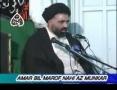 [02] Amr Bil Maroof Wa Nahi Anil Munkar - Mohurrum 2007 - Ustad Syed Jawad Naqavi - Urdu